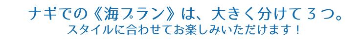 ナギの青の洞窟ツアーは大きく分けて3つ