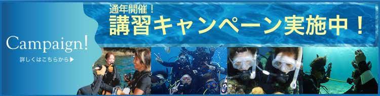 キャンペーン情報 毎年開催!沖縄青の洞窟講習キャンペーン実施中!