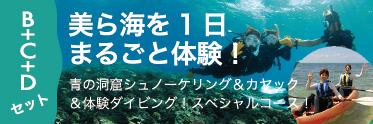 美ら海体験スペシャルコース