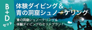 青の洞窟 熱帯魚ウォッチング
